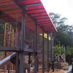 Lemur Forest Adventure – Taronga Zoo
